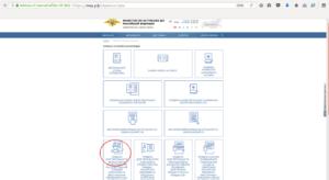 Проверка разрешений и патентов на работу иностранным гражданам