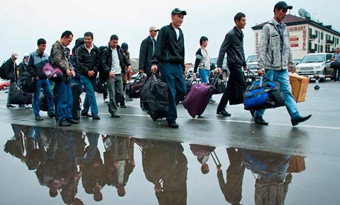 Организация миграционной политики в России
