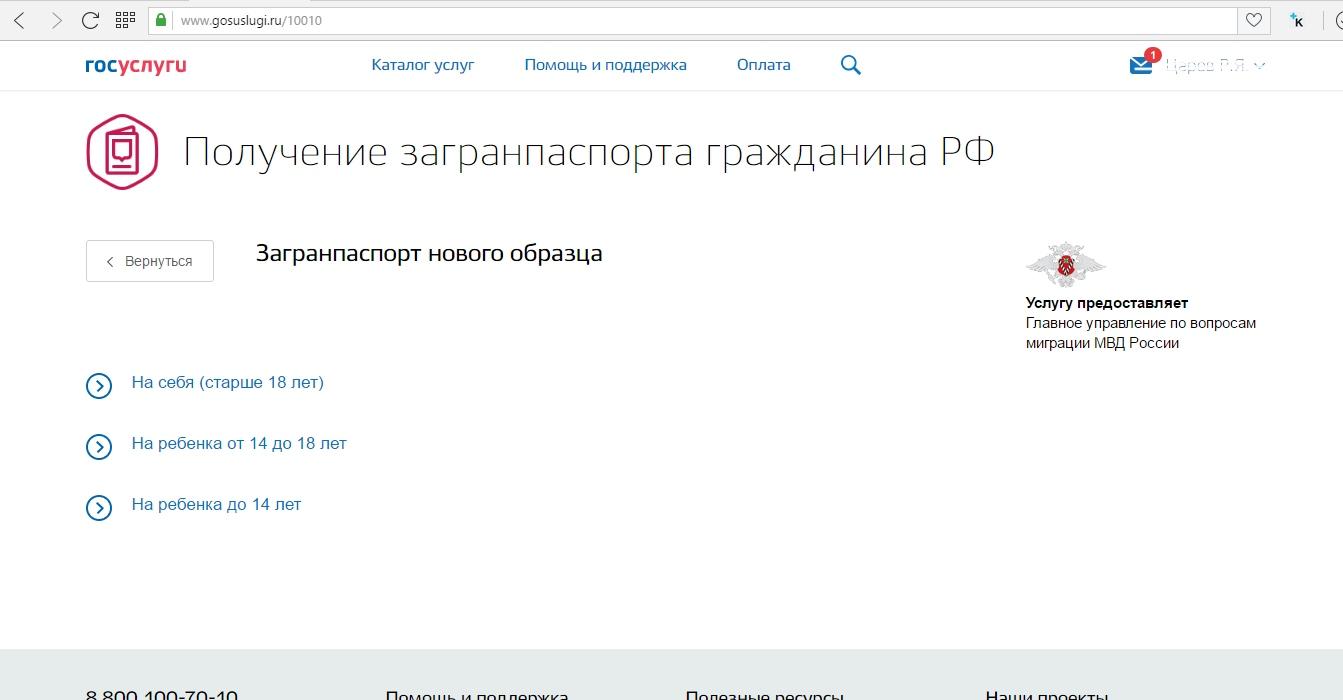 Процедура оформления второго загранпаспорта в России в 2018 году