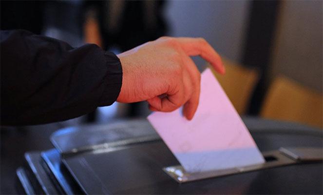 Голосование на выборах с ВНЖ