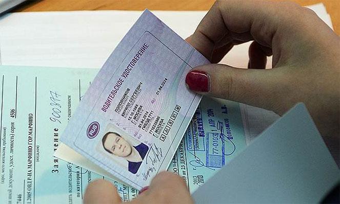 Условия поиска человека по водительским правам