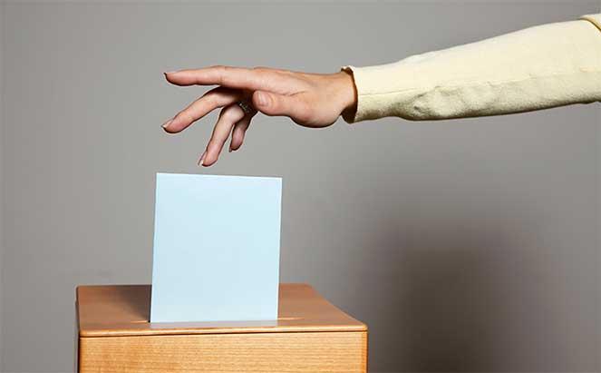 Участие в выборах