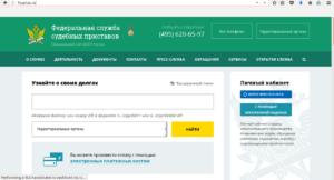 Фото 1. Скриншот главной страницы ФССП