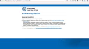 Поиск человека по паспортным данным на сайте ФНС