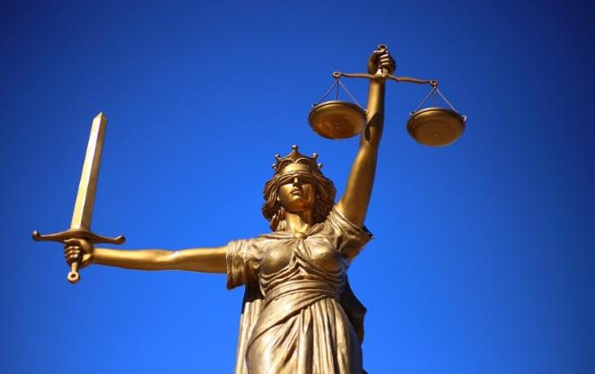 Конституционные права и обязанности