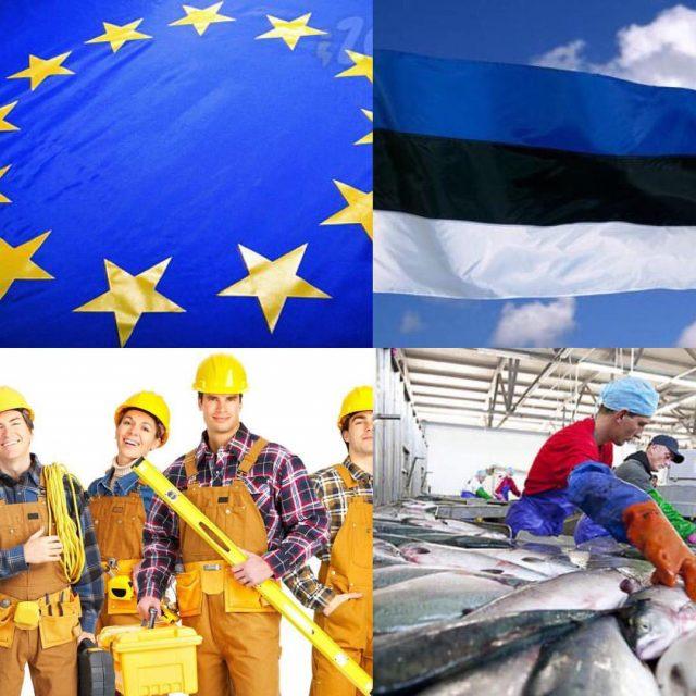 Вакансии в Эстонии для иностранцев