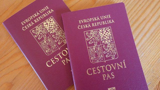 Что говорит закон о двойном гражданстве в Чехии?