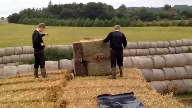 Сельскохозяйственный труд в Дании